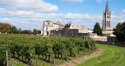 L'application de produits pharmaceutiques en viticulture est désormais interdite jusqu'à 50 m des limites des établissements scolaires.