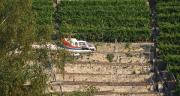Ségolène Royal souhaite interdire définitivement les épandages de produits phytosanitaires par hélicoptère. La fin des dérogations est-elle pour bientôt? (Ciragri17)