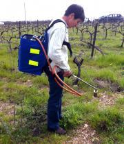 Le Manuflam de 2Ebalm testé par une viticultrice. Le désherbage thermique est à portée de main! (S. Favre/Pixel Image)