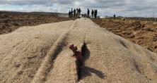 la société Agro-planet propose une prestation de paillage des plantation de vignes.