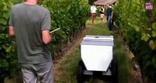 Le Vinerobot devrait permettre d'évaluer le rendement, la composition de la grappe, la vigueur et l'état hydrique de la vigne d'ici fin 2016.