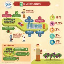 Le vin biologique en infographie