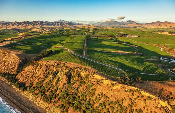 Vignerons du monde - Marlborough - Yealands Estate: exemplaire en développement durable viti-vinicole en Nouvelle-Zélande