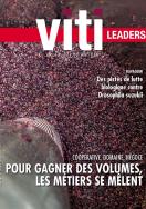 Viti leaders 428 octobre 2017