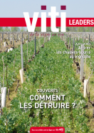 Viti Leaders 460 - avril 2021