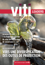 Viti Leaders 441 - mars 2019