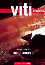 VITI LEADERS 446 OCTOBRE 2019