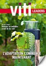 VTLEAD417