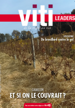 VITI LEADERS - 450 - mars 2020