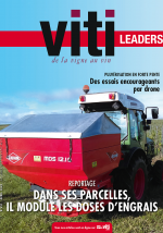 VITI LEADERS - 451 - avril 2020