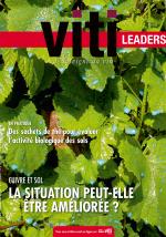 VITI LEADERS 439 - Janvier 2019