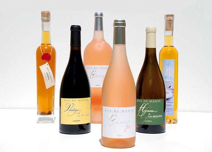 Les vins blancs et rosés sont les plus sensibles aux casses protéiques. L'utilisation des enzymes protéases, par l'hydrolyse des protéines, pourrait limiter ce phénomène. Photo : L. Theeten/Pixel Image