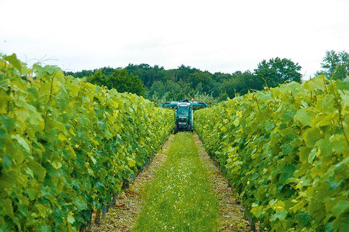 Sur le thème de l'entretien, de la maintenance et des réglages des agroéquipements, l'effectifdes agriculteurs formés n'est que de 0,5%, déplore Gérard Besnier. Photos: O.Lévêque/Pixel Image