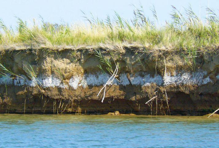 Sur les berges de l'Orb, le sel a laissé une trace nettement visible dans le sol. © DR