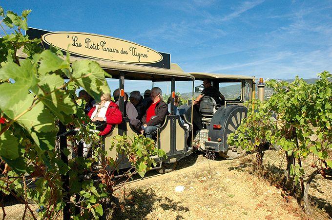Le domaine Alexandrin propose de découvrir les vignes languedociennes en petit train. La balade qui coûte 5€ est remboursée dès 30€ d'achat au caveau. Cette activité permet d'avoir un tarif réduit sur l'entrée d'un site privé très touristique de l'Hérault: la grotte de Clamouse. Photos : V. Attard