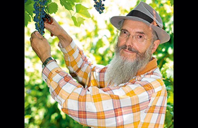 « Cette année, j'ai une récolte magnifique sans aucun traitement, grâce aux variétés résistantes, les Piwi», se félicite Patrice Bersac. CP : L. Theeten/Pixel image