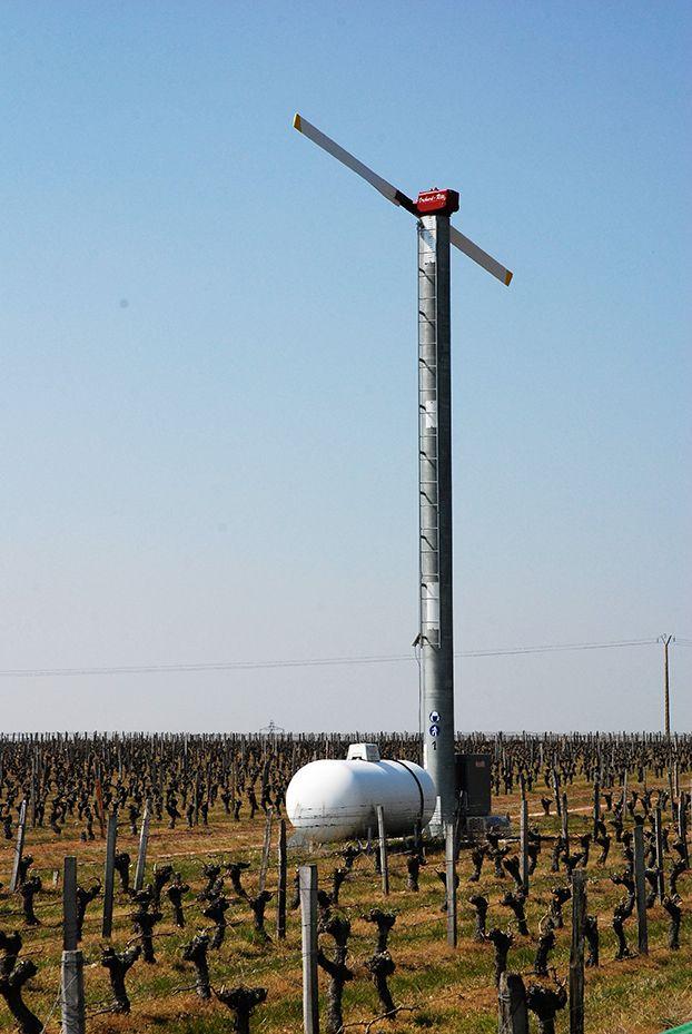 Le projet Sictag suivra, jusqu'en 2022, des tours antigel  de Chinon à Quincy. Photo : O. Lévêque/Pixel6TM
