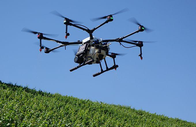 En Suisse, sept entreprises sont agréées pour réaliser  les traitements par drone. David Lefebvre