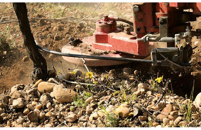 Hormis pour les outils  à effacement passif,  la consommation de carburant des outils intercep dépend moins de la vitesse que de celle des outils interrang. photos: IFV