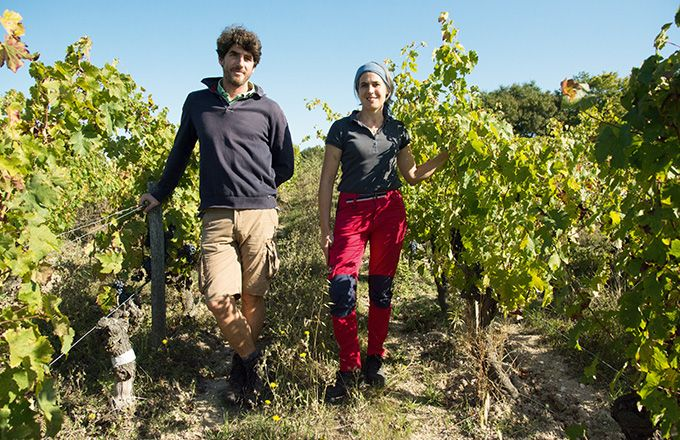 En étant en VDF, les propriétaires de Terre de l'Élu réfléchissent à introduire dans quelques années des cépages typiquement du sud  de la France dans leur terroir de l'Anjou noir. Terre de l'Élu
