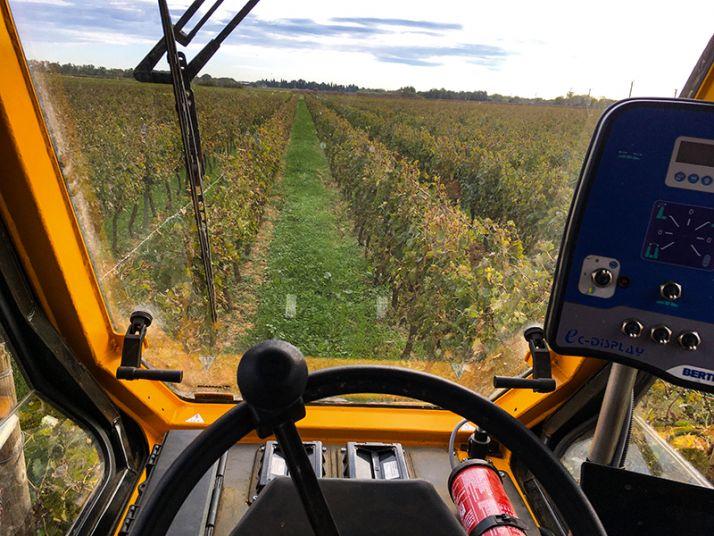 Le poste de conduite central en hauteur est particulièrement apprécié par les vignerons François Frézouls et Sébastien Régnier.
