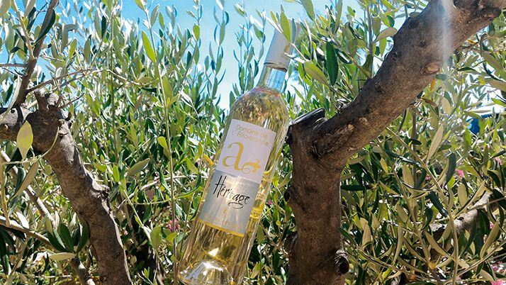 Le domaine de l'Allamande dans le Var oriente  sa production vers des vins «plaisir», vendus  aux alentours de 7euros aux consommateurs  dans la grande distribution. © Domaine de l'allamande