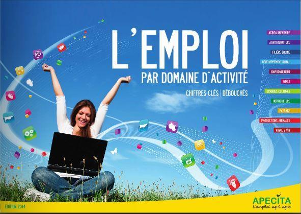 capture_apecita_lemploi_par_domaine_dactivite.jpg