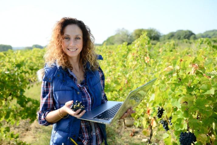 Covid et direct producteur en E-commerce : le nouveau graal des vignerons ?