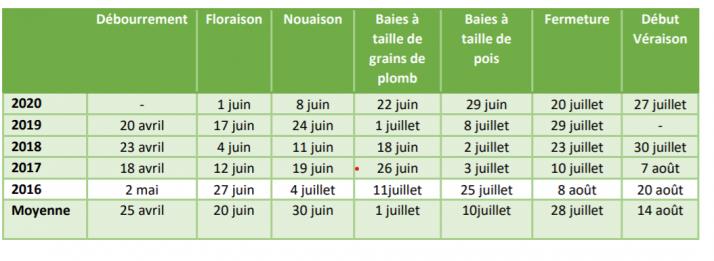 Les vendanges 2020  vont débuter lors de la première semaine de septembre en Lorraine