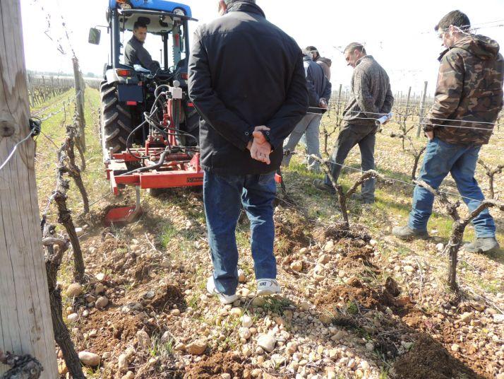 Journée de démonstration de travail du sol en viticulture dans le Gard. Photo : S.Favre/Pixel Image
