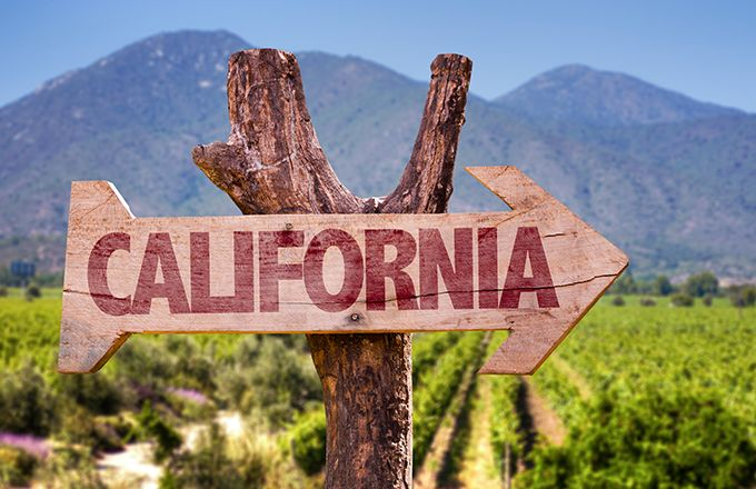 Un prix de la viticulture numérique pour les startups. © Gustavofrazao/Fotolia