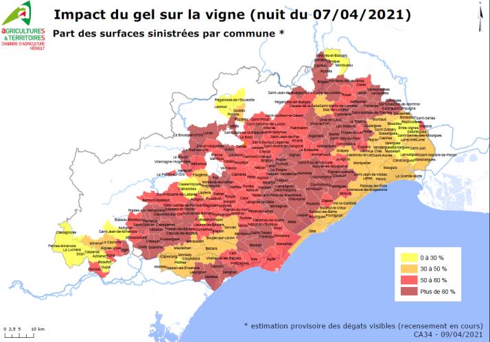 Part de surface de vigne sinistrée par le gel dans l'Hérault en avril 2021