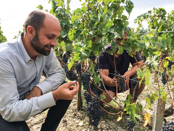 Pierre Maussire, le directeur technique du château Laffitte Carcasset, et Grégory Payen, chef de culture pour les 40ha de vigne du domaine, améliorent chaque année la qualité de pulvérisation.