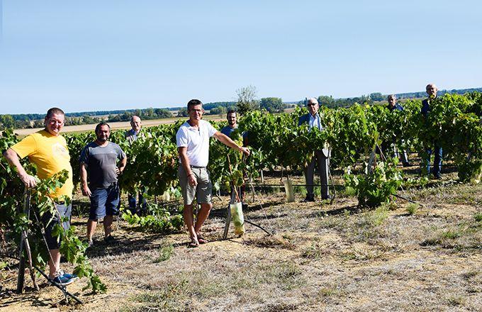 Les neuf agriviticulteurs de la coopérative Bourgogne du Sud. Photo: E.Thomas/Pixel6TM
