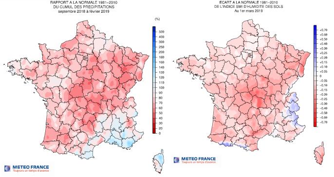 Cumul des précipitations et humidité relative du sol en 2019