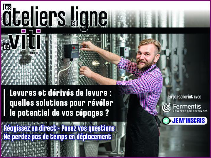 Atelier en ligne Viti & Fermentis - Levures et dérivés de levure: quelles solutions pour révéler le potentiel de vos cépages ?