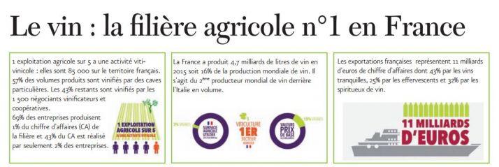 infographie_le_vin_la_filiere_agricole_ndeg1_en_france_cniv.jpg