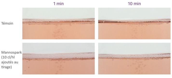 Avec Mannopsark, sur cet essai Laffort,  les bulles sont plus fines, plus régulières, la colerette est plus épaisse et plus stable dans le temps.