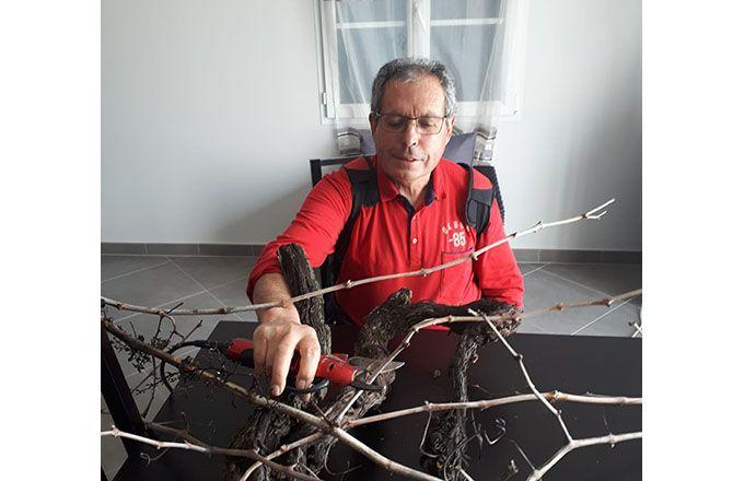 Dominique Favre, SCEA Favre en Charente-Maritime, tente de tailler et télétravailler. Pas toujours évident quand on est vigneron ! Photo : Nathalie Favre
