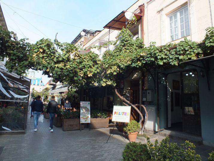 la vigne dans une rue de la capitale géorgienne (S.Badet)