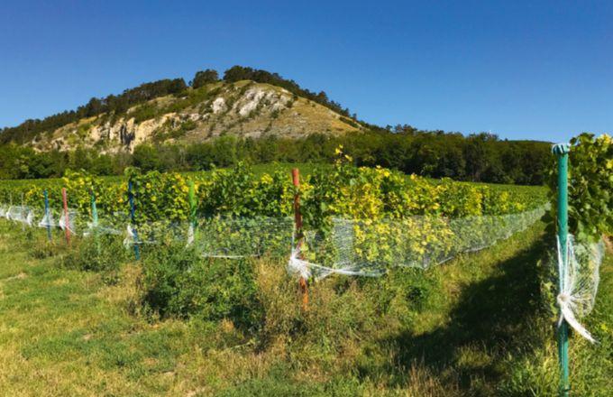 Photo: Audrey Domenach, Media et agriculture