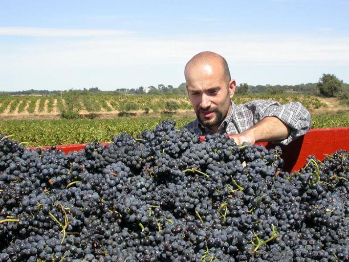 Stephan Brun, vigneron du groupe Ferme Dephy Vaucluse, a cessé d'utiliser des produits CMR depuis 2012.