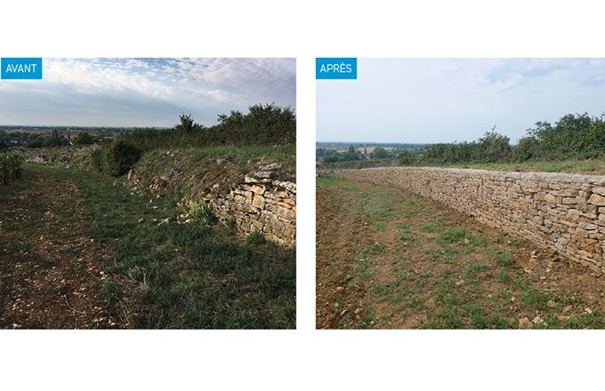 Murets en pierre sèche avant et après restauration grâce au dispositif d'aide mis en place par l'association des climats du vignoble de Bourgogne.