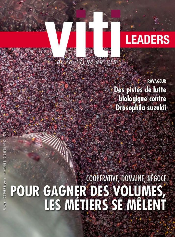 Viti leaders 428 octobre 2017