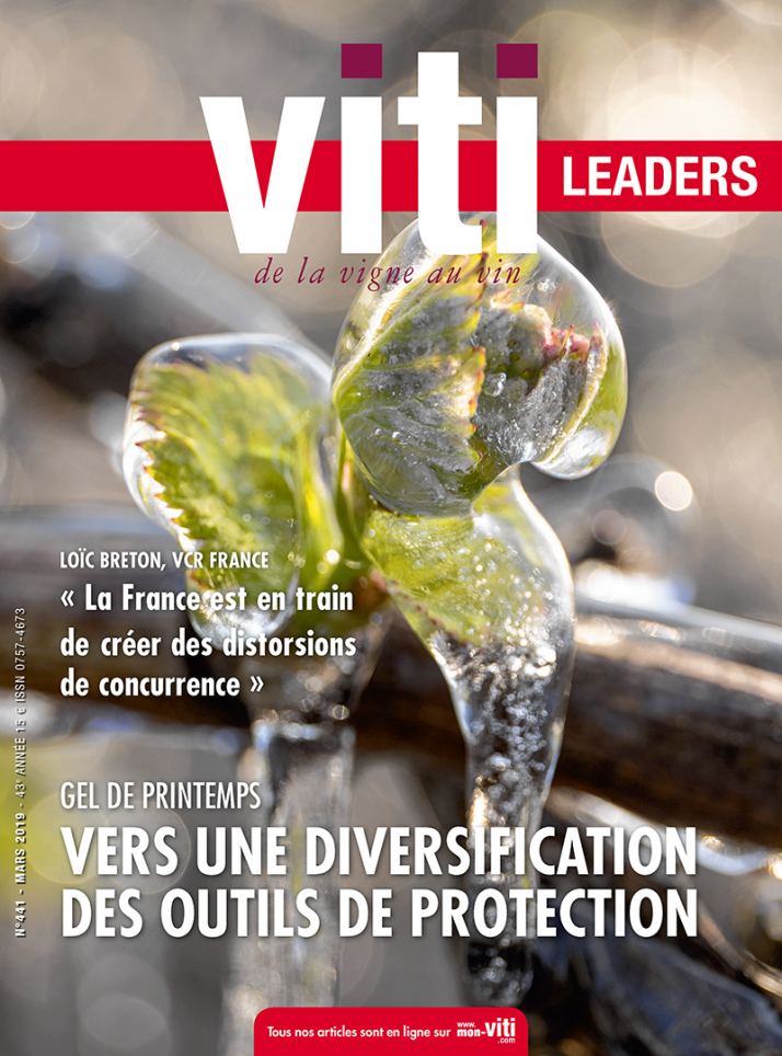 Viti leaders 441 mars 2019