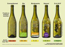 Cette illustration, produite par l'association des vins SAINS, met en évidence les différences entre les cahiers des charges des différentes démarches.
