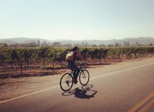 Balade dans les vignes californiennes!