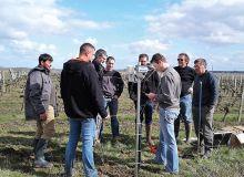 Le groupe 30000Écophyto de Bouillé-Loretz a fait l'acquisition de huit stations météoPromété en 2018, pour couvrir 500ha de vignes.