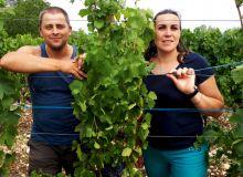 En 2008, Stéphane et Claire Trichon ont fait le choix de convertir le vignoble à l'agriculture biologique. CP : A.CoroneL/Terroir Est.