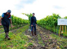 Bruno Gadiou (à gauche) et Antoine Allin (à droite), conseillers techniques aux Ets Fortet-Dufaud, estiment que le travail du sol avec rattrapage chimique est une bonne alternative au glyphosate.
